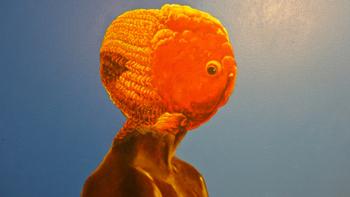 """Venus"" by Tommie Robinson"